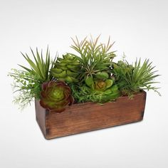 succulent arrangement in box on console table with lamps