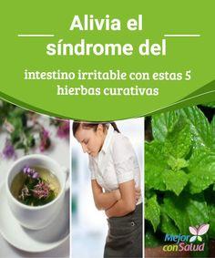 Alivia el #síndrome del intestino irritable con estas 5 hierbas curativas   Las propiedades curativas de algunas hierbas medicinales nos pueden ayudar a controlar los síntomas del intestino irritable. Descubre las 5 mejores.