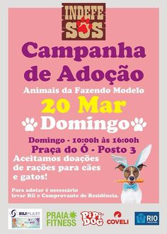 BONDE DA BARDOT: RJ: Adoção de cães e gatos na Barra da Tijuca, neste domingo (20/03)