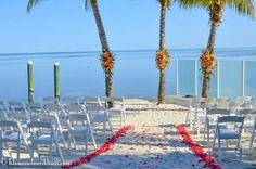 Tropical Oceanside ceremony set-up www.islamoradaweddings.com Florida Keys Weddings by Caribbean Catering - Google+