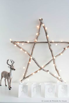 branches star, christmas decoration