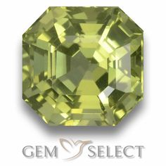 GemSelect features this natural untreated Apatite from Madagascar. This Green Apatite weighs 2.6ct and measures 7.6 x 7.5mm in size. More Asscher Cut Apatite is available on gemselect.com  #birthstones #healing #jewelrystone #loosegemstones #buygems #gemstonelover #naturalgemstone #coloredgemstones #gemstones #gem #gems #gemselect #sale #shopping #gemshopping #naturalapatite #apatite #greenapatite #octagongem #octagongems #greengem #green Green Gemstones, Loose Gemstones, Natural Gemstones, Buy Gems, Asscher Cut, Gem S, Gemstone Colors, Madagascar, Stone Jewelry