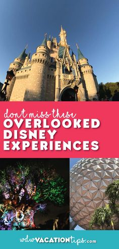 You are NOT going to want to miss out on these overlooked Disney Experiences.
