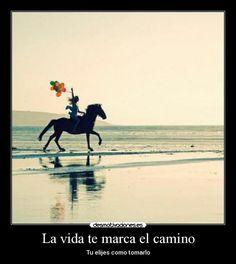 carteles vida caballos globos playa desmotivaciones
