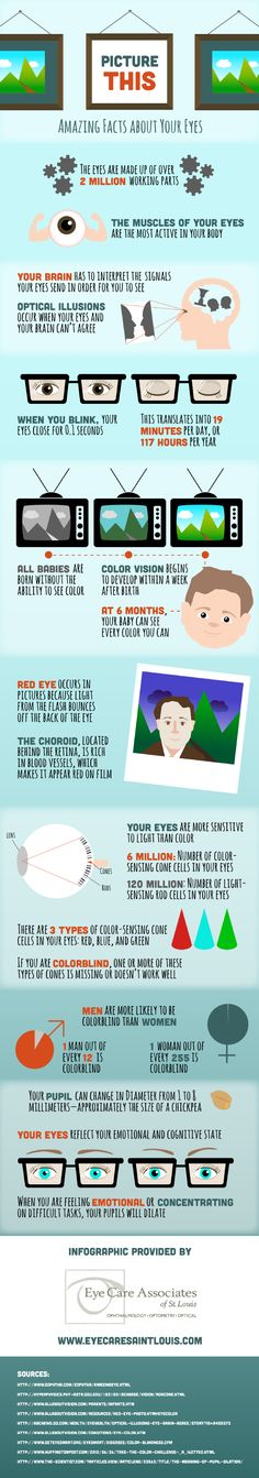 Picture This: Amazing Facts about Your Eyes [INFOGRAPHIC]