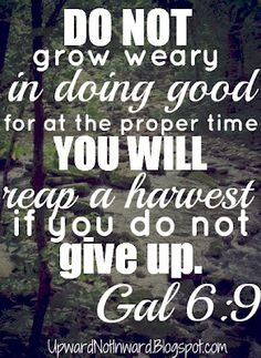 Do not grow weary in doing good for at the proper time you will reap a harvest if you do not give up.  Gal 6:9