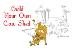 Building sheds and more
