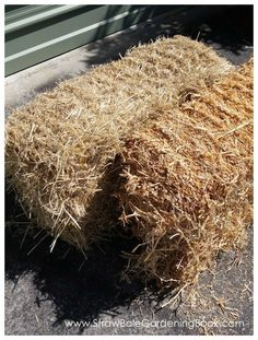 Using Barely Straw Vs Pea Straw for your straw bale garden - what's the difference?... | http://www.strawbalegardeningbook.com/inspiration/7-smart-reasons/
