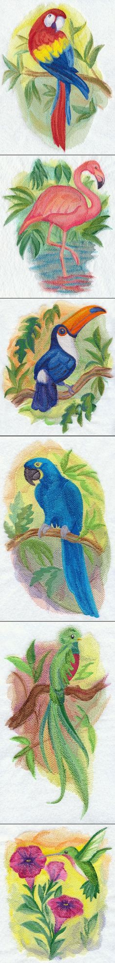 Watercolor Wonders Tropical Machine Embroidery Designs @ Embroidery Library