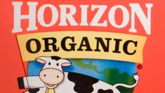 Cornucopia Institute files third legal complaint over alleged violations at Horizon 'Organic' dairy factory farm Organic Packaging, Natural News, Factory Farming, Milk And Cheese, Organic Living, Self Conscious, Plant Based, Dairy, Scary Stuff