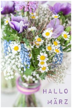 Seasons Months, Months In A Year, March Month, 8th Of March, Neuer Monat, Holiday Logo, Hello March, Flower Collage, Holiday Pictures