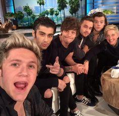 One Direction on Ellen DeGeneres: Did Harry Styles Send Taylor Swift Roses? One Direction Selfie, One Direction Pictures, I Love One Direction, Direction Quotes, Zayn Malik, Niall Horan, Liam Payne, Ellen Degeneres, Louis Tomlinson