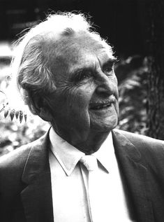 Richard Neutra was born in Vienna in 1892 and attended the Technische Hochschule (Vienna University of Technology) from 1911 to 1917.His career crossed five decades and he can certainly be defined as one of the most important architects of the mid-century as of the whole twentieth century.