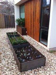 modern garden, galvanized raised bed