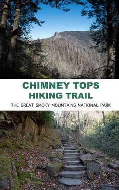 Hiking in The Smokies: The Chimney Tops Hiking Trail is one of the most popular trails in the Great Smoky Mountains National Park.