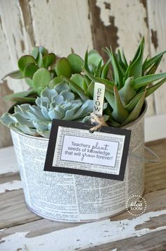Easy Teacher's Appreciate Gift Idea | Succulent planter | theidearoom.net