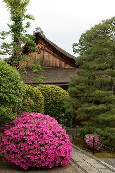 Kyoto  - by Cris Figueired♥