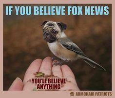 If You Believe Fox News...CFC...Court approved liars for years now.