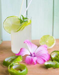 Minze-Limettensirup - Rezepte mit und ohne Thermomix