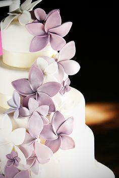 sugar plum cake shoppe_Colorado Wedding Cakes 5