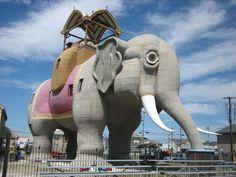 1. Lucy the Elephant, Margate City (scheduled via http://www.tailwindapp.com?utm_source=pinterest&utm_medium=twpin&utm_content=post86986045&utm_campaign=scheduler_attribution)
