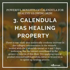 Calendula Benefits, Glowing Skin, Collagen, Healing, Day, Collages, Therapy