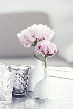 Peonies and a glass of water - momentulzero