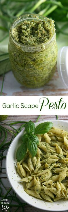 Garlic Scapes Pesto...serve this vegetarian farmer's market favorite over pasta or chicken, spread on sandwiches or paninis, or even as an appetizer dip for bread! It freezes well too.