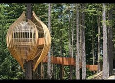 Redwoods Treehouse (Warkworth, New Zealand)
