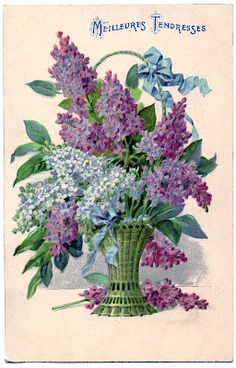 Antique Graphic - Beautiful Basket of Lilacs - The Graphics Fairy