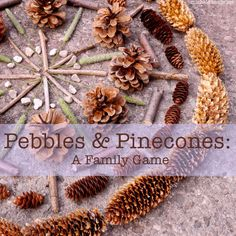 Pebbles and Pinecones Game from Michele Made Me.  A fun, easy to play game using natural materials from the backyard.  There are a ton of acorns in Franklin Park that would be perfect for this game!
