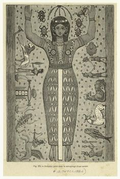 Zodiaque peint dans le sarcophage d'une momie.  [[Zodiac painted on the sarcophagus of a mummy.]] (1884)