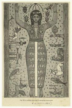 Zodiaque peint dans le sarcophage d'une momie. [[Zodiac painted on the sarcophagus of a mummy.]] (1884)