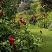Para manter um jardim bonito e cuidado durante todo o ano, é importante que conheça os perigos que o podem afetar e as soluções a que pode recorrer para os eliminar. Saiba o que fazer! #oleomac #oleomacportugal #anointeiro #primavera #verão #outono #inverno #jardim #bonito #estilodevida
