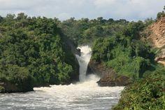 Uganda es un pequeño país de África desconocido para muchos pero con diversos lugares con encanto que atrapan a cualquier viajero. Las Cataratas Murchison (o Murchison Falls) es uno de ellos.