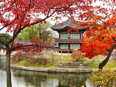 South Korea - Palace Seoul