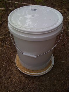 chicken feeders | then filled the bucket with feed and left it for the chickens. I ...