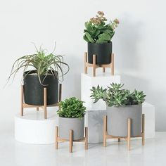 Downy Pot and Stand