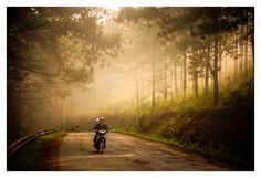 Dalat Morning, Viet Nam         --   The world belongs to morning people !  --
