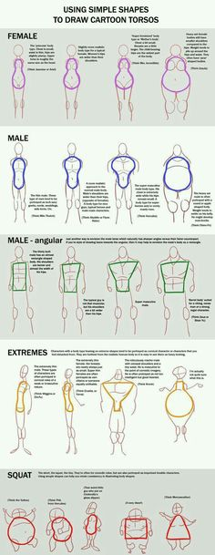 The study of cartoon body figures