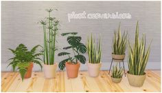 7 plant conversions at Lina Cherie via Sims 4 Updates