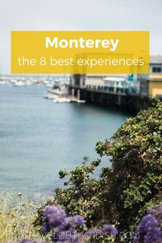 There's more to Monterey than the Aquarium! Whale watching, sea kayaking, + 6 other experiences and things to do in Monterey County!
