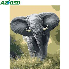 Are you looking for elephant paint by number kits? You'll find plenty of paint by number kits of elephants in a variety of styles and sizes. If you love elephants be sure to check out all of these paint by number kits of elephants. Elephant Wall Art, Paint By Number Kits, Canvas Poster, Wall Canvas, Needlepoint Canvases, Needlepoint Designs, To Color, Wall Art Pictures, Modern Wall Art
