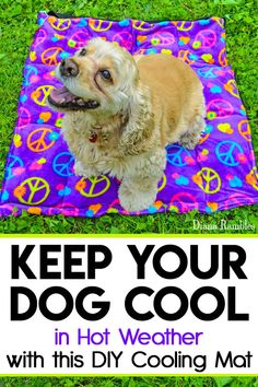 DIY Dog Cooling Mat Sewing Tutorial - Want to keep your dog cooled off this summer? Here is a DIY Dog Cooling Mat Tutorial that will keep your pooch cool while he's outside with the family. It's great pet bed for warm weather climates. It's easy to make and only requires basic sewing skills. Custom mats are for sale if you are unable to sew.