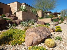professional desert landscape design photos - Google Search Hillside Landscaping, Landscaping With Rocks, Landscaping Plants, Front Yard Landscaping, Landscaping Ideas, Arizona Gardening, Desert Gardening, House Landscape, Desert Landscape
