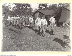 BUIN AREA, BOUGAINVILLE. 1945-09-13. JAPANESE STAFF OFFICERS ARRIVING AT HEADQUARTERS 2 CORPS SURRENDER PARTY CAMP IN KAHILI AREA FOR LIAISON PURPOSES AND TO ARRANGE WITH AUSTRALIAN OFFICERS THE ... Troops, Ww2, September, Southern, Army, Camping, Japanese, Campsite, Military
