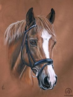 Quasi vero complimenti a chi lo ha disegnato. Horse Drawings, Animal Drawings, Painted Horses, Watercolor Horse, Horse Artwork, Horse Silhouette, Equine Art, Horse Pictures, Animal Paintings
