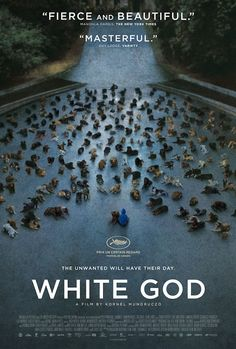 """The unwanted will have their day"" - White God is so unflinching and powerful."
