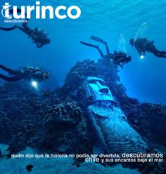 #Turinco www.turinco.co  Ph: encontrado en thefancy.com