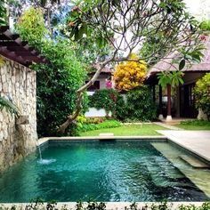 Small Swimming Pools, Luxury Swimming Pools, Luxury Pools, Dream Pools, Swimming Pools Backyard, Swimming Pool Designs, Pool Landscaping, Backyard Pool Designs, Small Backyard Pools